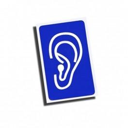 Magnes: Głuchoniemy